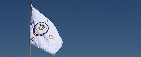 Bandeira_PV