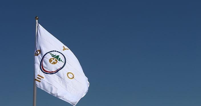 Bandeira_Pro_Vida